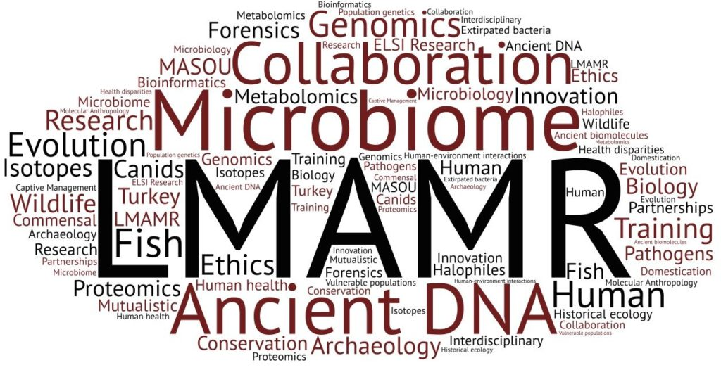 LMAMR Word Cloud